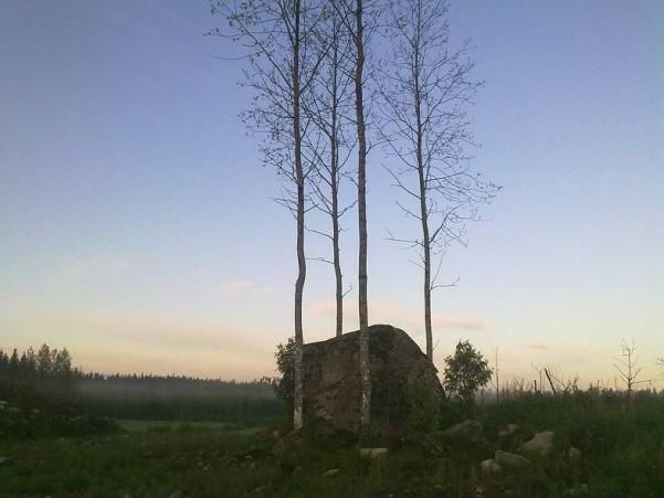 venuskuu004.jpg
