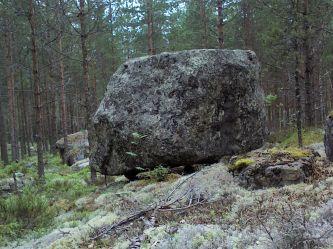 paali_kakkosnokka_pieni.jpg