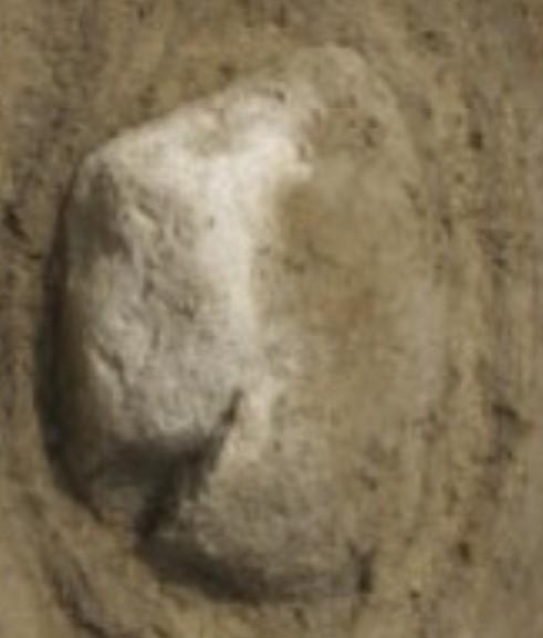 neandertalihautakiviharrinkangaskaiverrusta.jpg