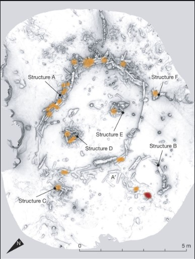 neandertalluolataide.jpg