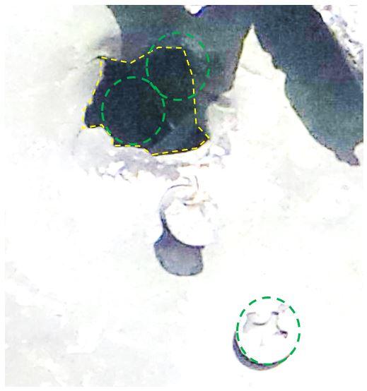 keskity-jukkis-keskityC-HOX2.JPG